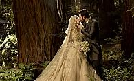 Cum arata nunta de 10 milioane de dolari a presedintelui Facebook! Imagini spectaculoase