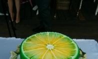 Primele imagini de la petrecerea Perfectelor. Vezi cum s-au distrat vedetele la cea mai racoritoare petrecere a verii - FOTO