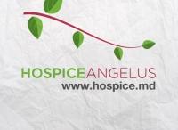Lumea buna a capitalei s-a adunat astazi la Balul anual de caritate, Organizat de Hospice Angelus Moldova - VIDEO