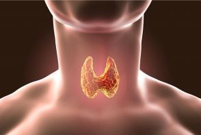 Glanda tiroida: cum iti dai seama daca functioneaza normal? Afla ce analize trebuie sa dai - FOTO