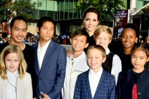 Angelina Jolie, in pericol sa piarda custodia celor 6 copii. Ce a facut actrita - FOTO